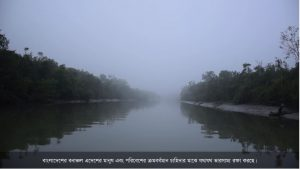 Introduction to Bangladesh Forest Inventory