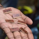 RFID chips are prepared before inserting into trees in the Sundarbans