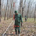 Setting up plot boundary in a Rubber plantation in Sal area Tangail