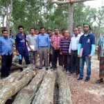 Data Collection for Allometric equation development in Tangail